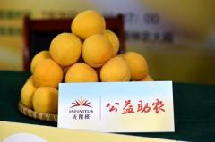 黄桃熟了 爱心浓了 无限极开启公益直播为果农带货